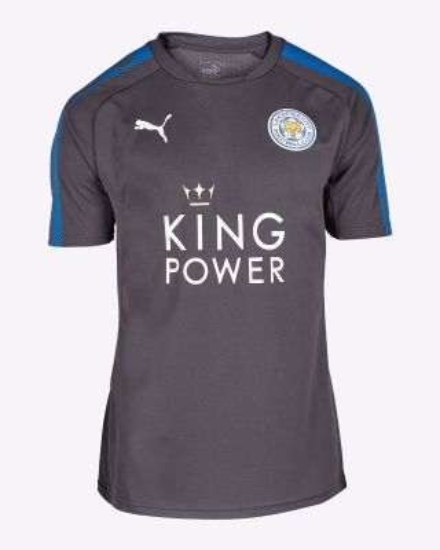 Puma Adults T-Shirt Ebony/Royal 2017/18